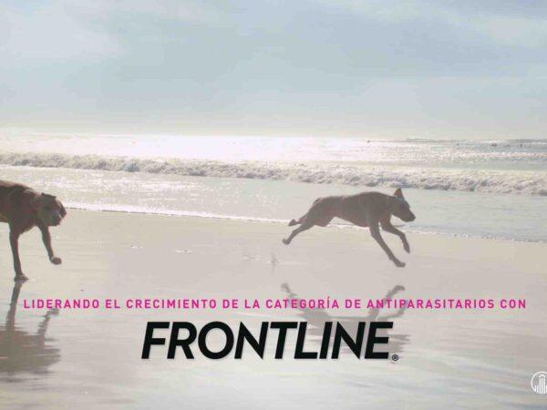 FRONTLINE (AGENCIA PIECE OF CAKE)